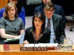 САД: Радићемо на томе да Косово постане члан УН-а