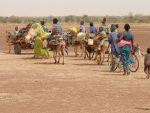 СЕНЗАЦИОНАЛНО ОТКРИЋЕ МЛАДИХ СРБА: Овако може да се нахрани Африка, а камоли Србија