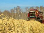 ПРЕМИЈЕР МЕДВЕДЕВ: Русија настоји да храни целу планету