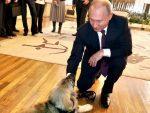 МОСКВА: Како су се руски корисници Фејсбука захвалили српском председнику на поклону за председника Путина