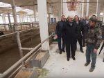 НИЈЕ МОГАО ДА ВЕРУЈЕ СВОЈИМ ОЧИМА: Због оног што је видео на пољопривредном газдинству, Лукашенко викао на директора и руководиоце
