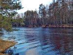НАТАЛИЈА ПЕУНОВА: Пролеће у Русији, кад се буди живот