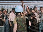 БОЖИДАР ЗЕЧЕВИЋ: Док иза Јасмиле Жбанић сложно стоје Бакирова Босна, НАТО и ЕУ, ми се прегањамо са битком за Кошаре