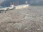 Хитна акција: Еколошка катастрофа на Дрини биће уклоњена